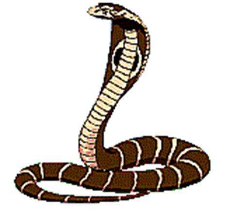 membuat gambar gif animasi ular gif gambar animasi animasi bergerak 100 gratis