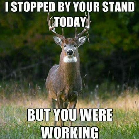 Hunting Meme - deer hunting memes to make you laugh cry and cringe