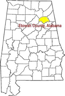 Alabama Property Tax Records Delta Computer Systems