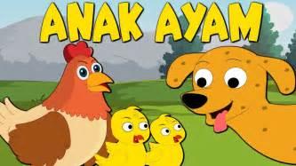 Lagu Anak Indonesia anak ayam tek kotek kotek lagu anak anak
