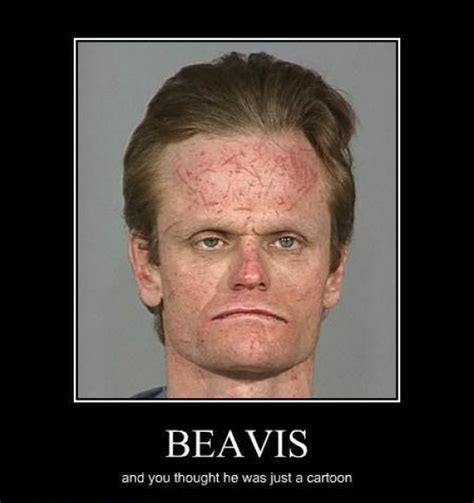 Memes And Funny Pictures - beavis funny pictures quotes memes funny images