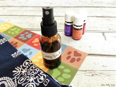 calming spray for dogs calming spray for dogs miss molly says