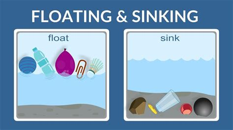 Objects That Sink And Float by Float Or Sink Why Do Things Float Why Do Things Sink