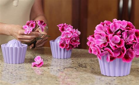 Cupcake Vase by Unique Vases The Cupcake Vase From Fleur Daily