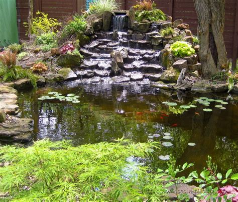 cool backyards 53 cool backyard pond design ideas digsdigs