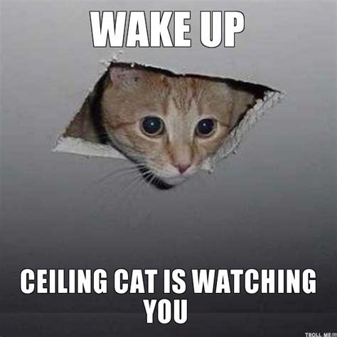 Wake Up Meme - wake up memes gallery ebaum s world