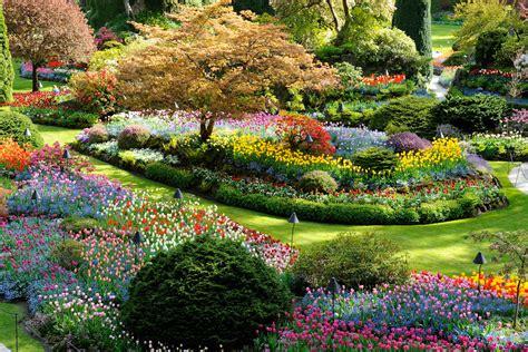 ver imagenes jardines japoneses c 243 mo son los jardines japoneses decoracionjaponesa com