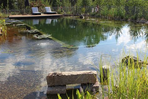 Natural Pool by Biotop Natural Pools Garden Ponds Nature Pools