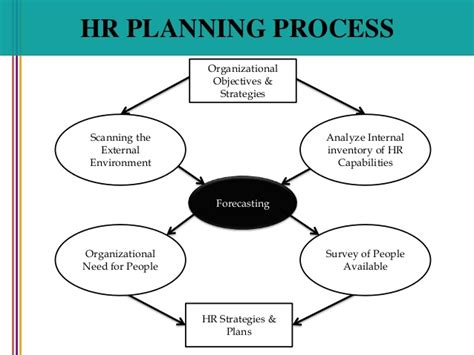 human resource planning diagram process hrm planning images