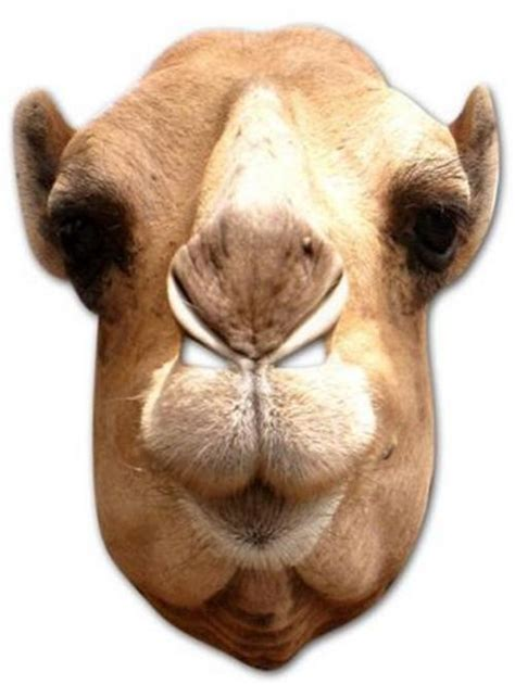 printable camel mask template best photos of camel mask template printable camel mask