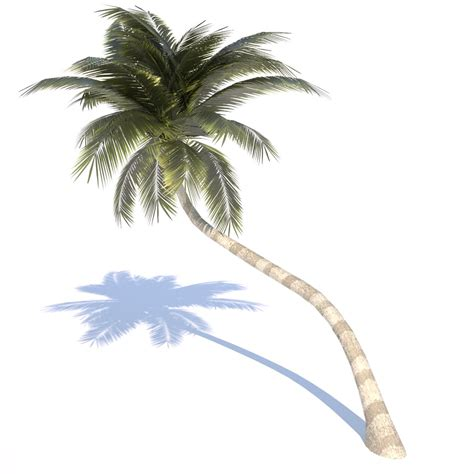 Appliance Colors coconut tree 02 med poly 3d model game ready obj 3ds