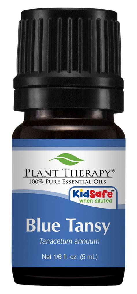 plant therapy blue tansy essential ambrosial fragrances of heaven osmanthus
