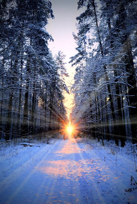 winter solstice december solstice sun enters capricorn 2015