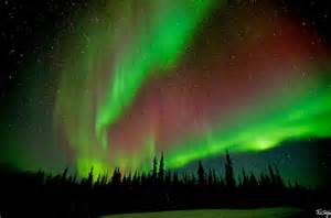 things to do in fairbanks usa lonely planet