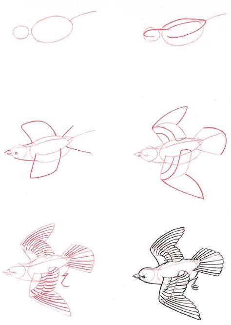 bird lifeandhealth life and health