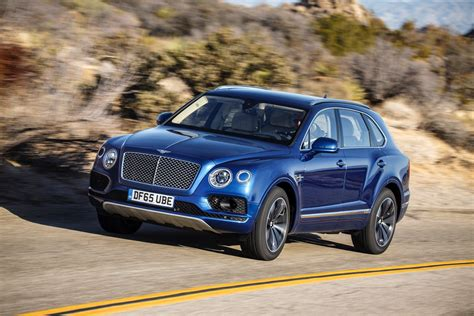 blue bentley 2016 2016 bentley bentayga cars suv blue wallpaper 1600x1067