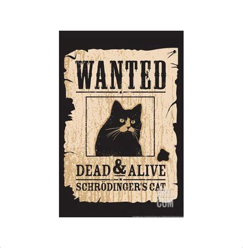 printable cat poster design templates posters sle funny wanted poster 19