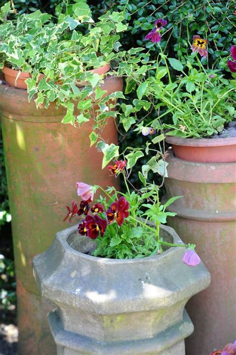 Chimney Pot Planters by 17 Best Images About Chimney Pot Planters On