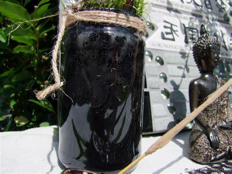 wespen im garten vertreiben wespen vertreiben meriseimorion