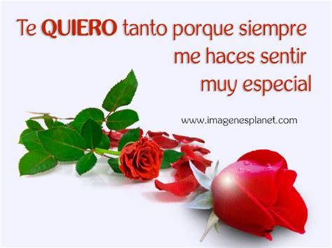 imagenes de joao rojas con frases imagenes de rosas rojas con frases de amor con movimeinto