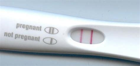 what does scow up mean fade line on a pregnancy test things you didn t know