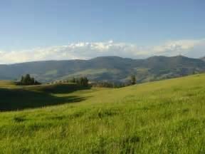 yellowstone landscape typical yellowstone landscape at 8 000