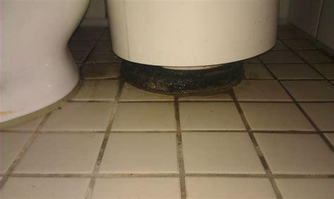 toilettenschüssel mit dusche toilette undicht stand wc abdeckung ablauf dusche