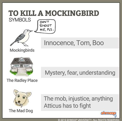 themes in to kill a mockingbird gcse mockingbirds in to kill a mockingbird tkam unit