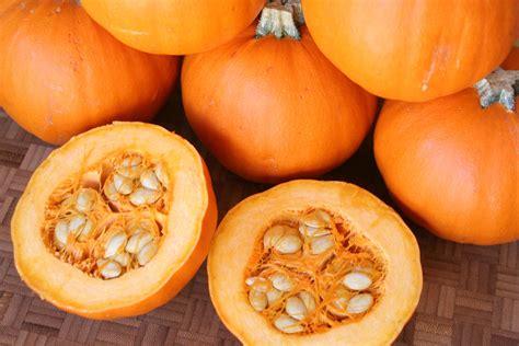 pumpkin food healthy halloween pumpkin recipes secretly healthy