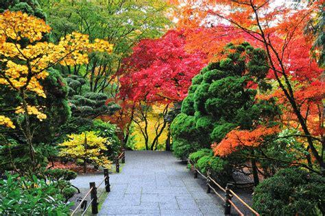 imagenes de jardines mas bellos del mundo imagenes ethel junio 2014