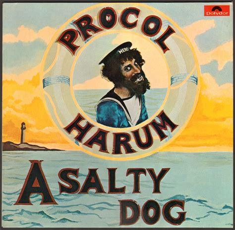 salty dogs a salty