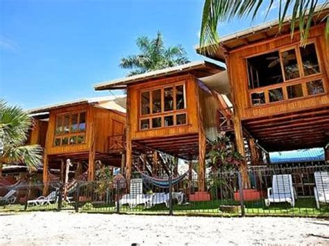 treehouse honeymoon samara tree house inn updated 2017 reviews playa samara