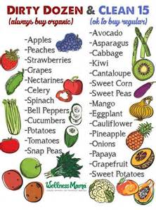 400 best ideas about wellness mama natural home on pinterest homemade sodas and health