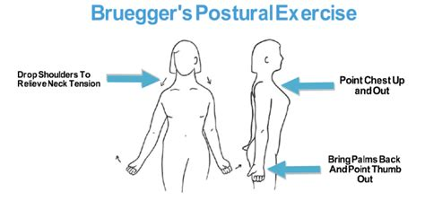 exercises for posture the stand program for better health through posture books top exercises to improve posture that you can do today