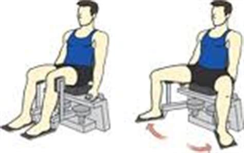 come aumentare il sedere come aumentare i glutei fare crescere il sedere