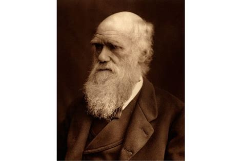 charles darwin victorian mythmaker 1444794884 from charles darwin s beard to george eliot s right hand 4 famous victorian bodily quirks