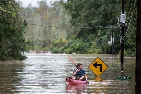 texas parks and wildlife boat registration houston alligators and snakes may swim through south carolina