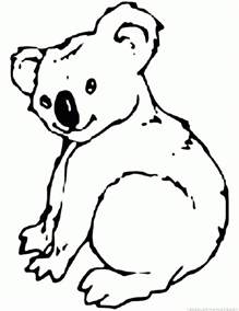 koala color koala coloring pages dragoart coloring pages