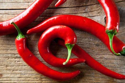 alimenti afrodisiaci naturali tra leggenda e realt 224 ecco i cibi afrodisiaci che