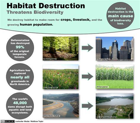 Landscape Biodiversity Definition Preserving Biodiversity