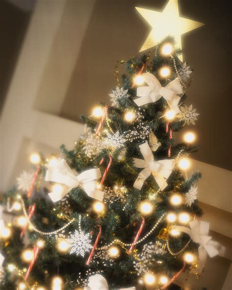 come decorare l albero di natale blogmamma it blogmamma it