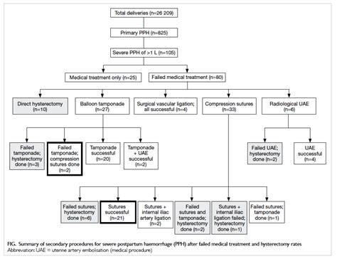 pph treatment postpartum hemorrhage diagram pictures to pin on pinterest