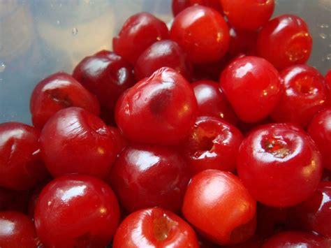 homemade quot maraschino cherries quot boston food whine