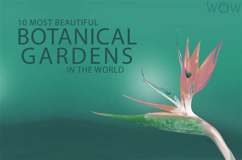 botanical garden in the world 10 most beautiful botanical gardens in the world wow travel