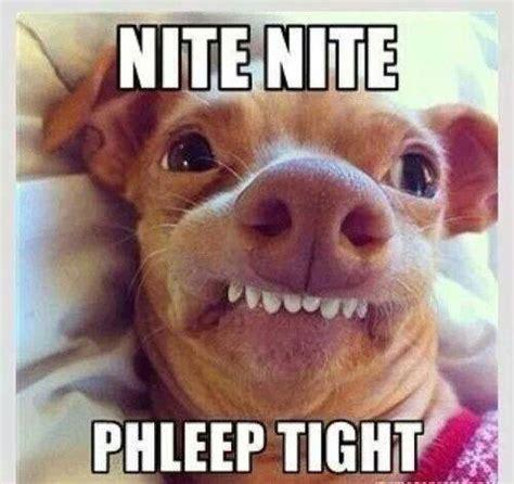 Phteven Dog Meme - i phteven lovin tuna aka phteven pinterest