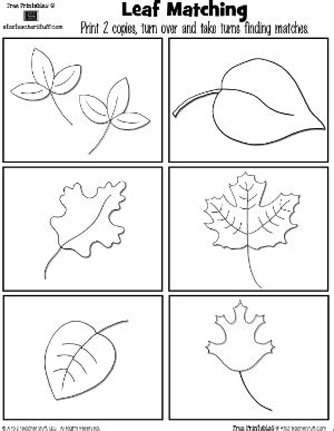printable leaves for sorting leaf cards matching game a to z teacher stuff