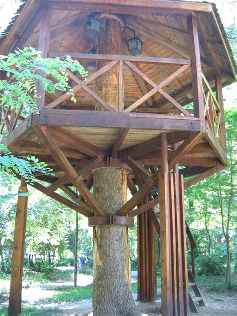 adult tree house plans 18 best images about treehouse on pinterest kid tree houses trees and a tree