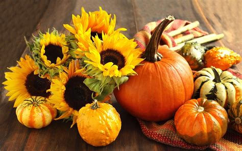fall wallpaper backgrounds with pumpkins wallpapersafari