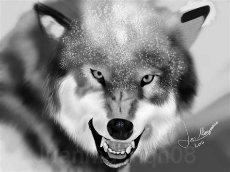 imagenes en blanco y negro de lobos dibujo digital de un lobo juanma nqn08 taringa