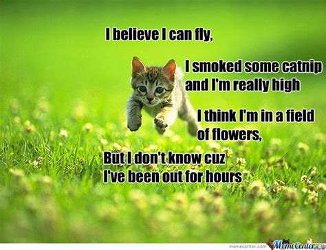 I Believe I Can Fly Meme - i believe i can fly by gabe2234 meme center